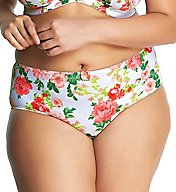Goddess Kayla Brief Panty GD6168